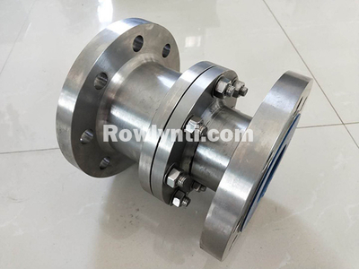 Gr2 Vertical lift titanium check valve